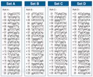 Random-Primer kity pro RAPD-PCR
